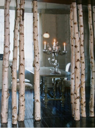 trees screens birches pole deco recherch google branche de bouleau decoration 3d birches. Black Bedroom Furniture Sets. Home Design Ideas
