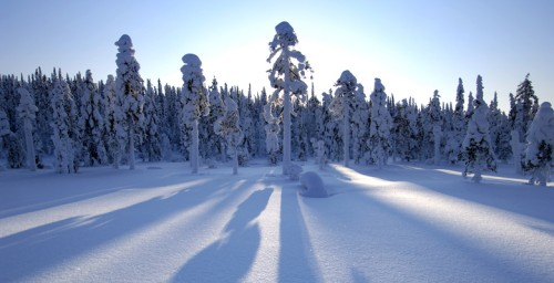 18FL0_00300_Lapland2.jpg